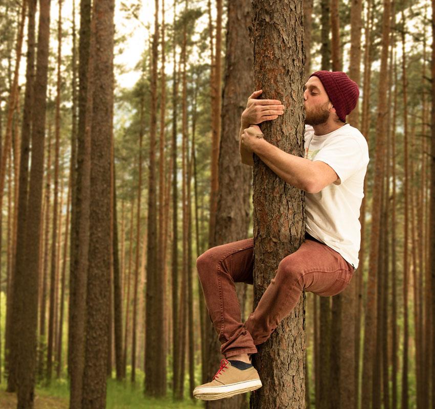 skog singlar)