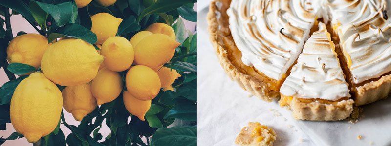 Baka en citronkaka. Laga tillsammans med dejten eller bjud på det färdiga resultatet. Du kommer känna dig så nöjd och det kommer dofta vansinnigt gott.